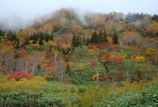 Kolorowa i nostalgiczna jesień w prefekturze Nagano